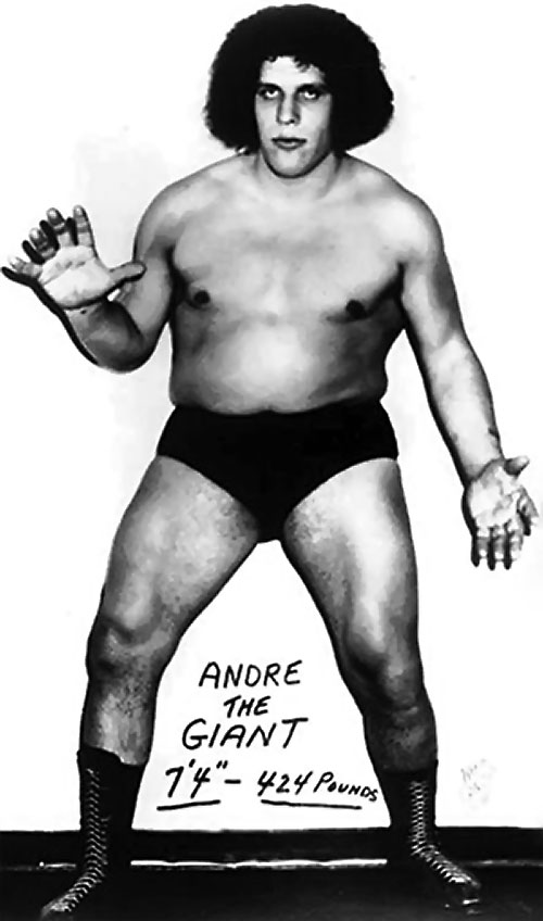 Andre the Giant (wrestler) B&W photo with afro