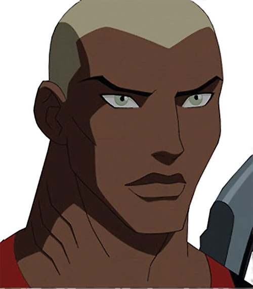 Aqualad from the Young Justice cartoon - portrait