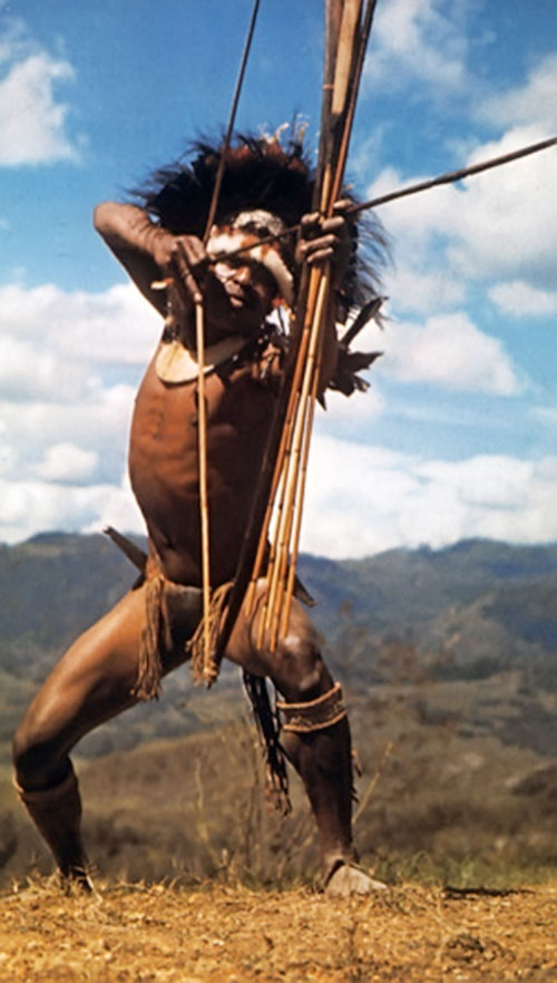 Traditional native archer