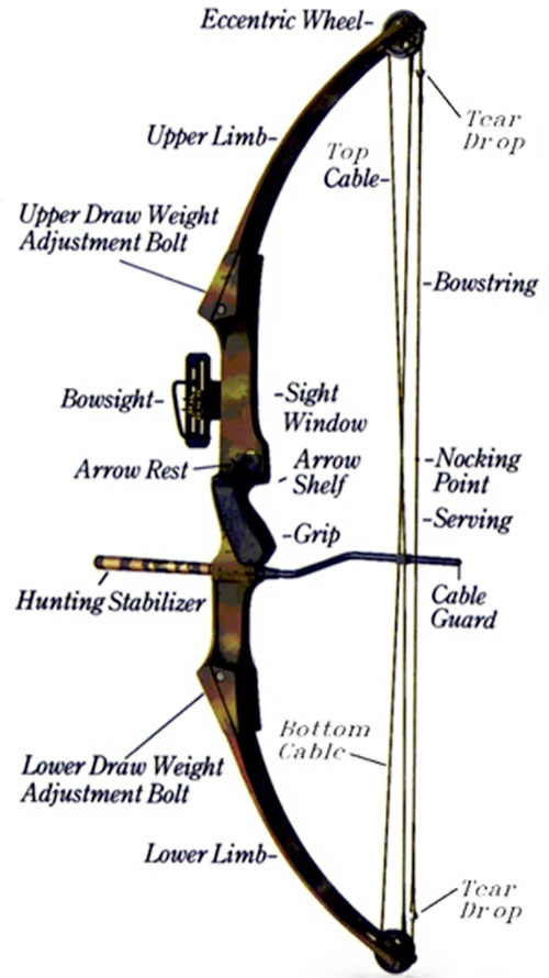 A modern compound bow