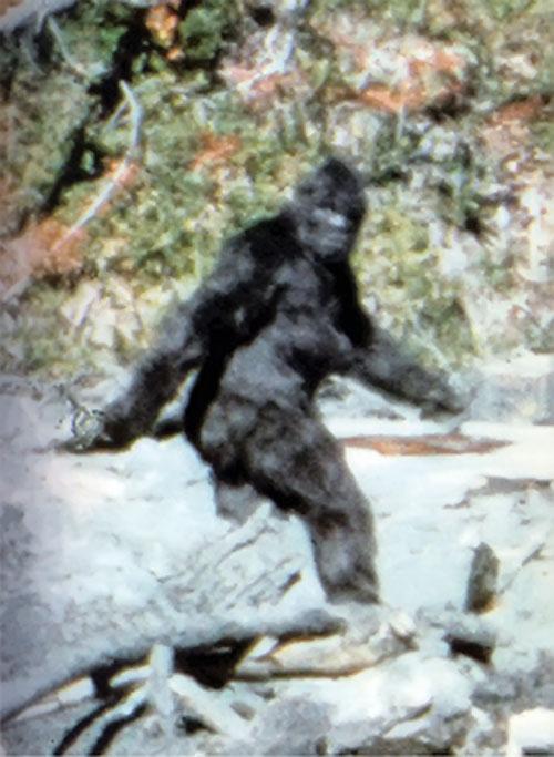 Bigfoot iconic photo