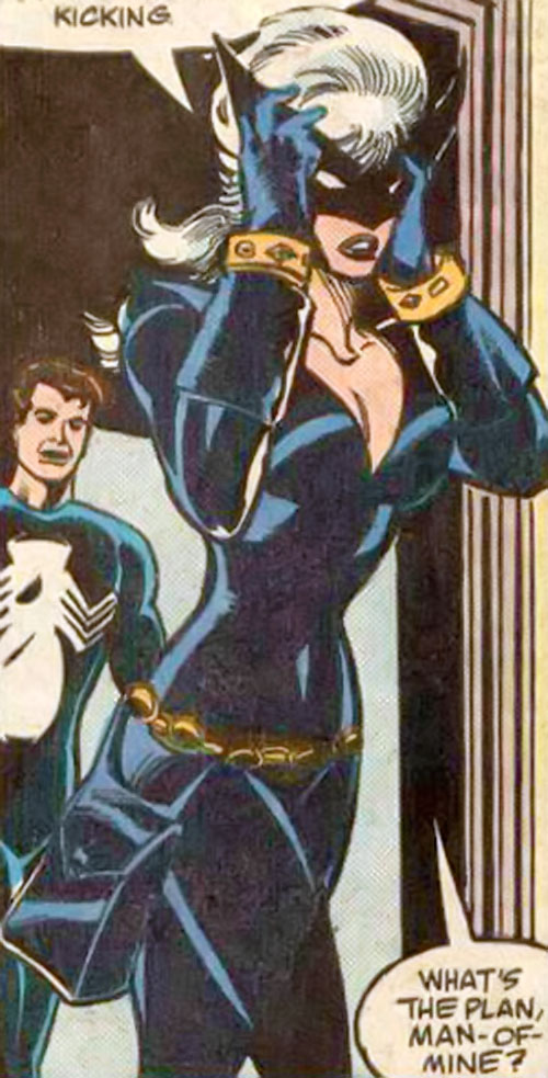 Black Cat (Spider-Man character) (Marvel Comics) with the dark blue costume and winged mask, leaving a room
