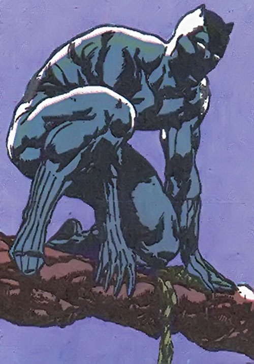 Black Panther (Marvel Comics) prowling on a branch