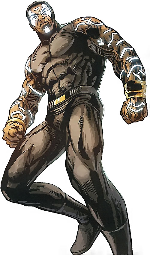 Black Panther (T'Challa during Doomwar) (Marvel Comics)