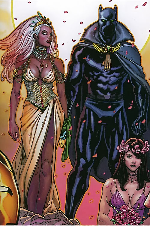Black Panther (T'Challa by Hudlin) (Marvel Comics) and Storm during the marriage ceremony