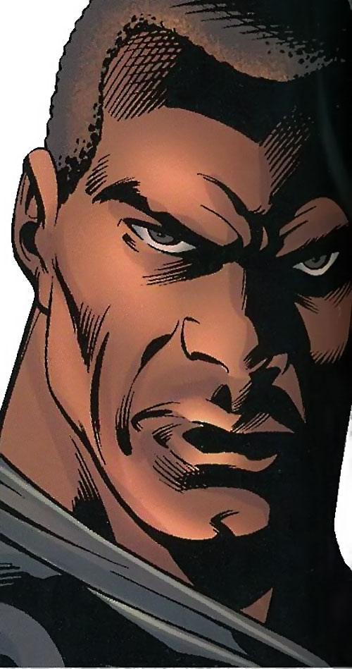 Black Panther (T'Challa by Hudlin) (Marvel Comics) face closeup