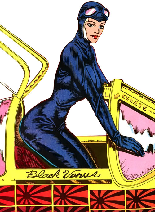 Black Venus (AC Comics) (Femforce ally) in the cockpit of a WWII fighter