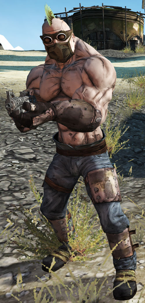 Borderlands - bruiser bandit