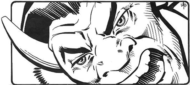 Buffalo face closeup