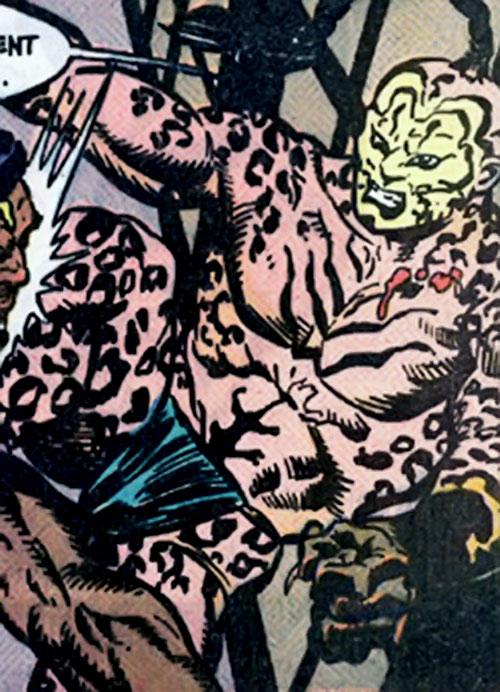 Catseye of the Yakuza (Suicide Squad enemy) (DC Comics)