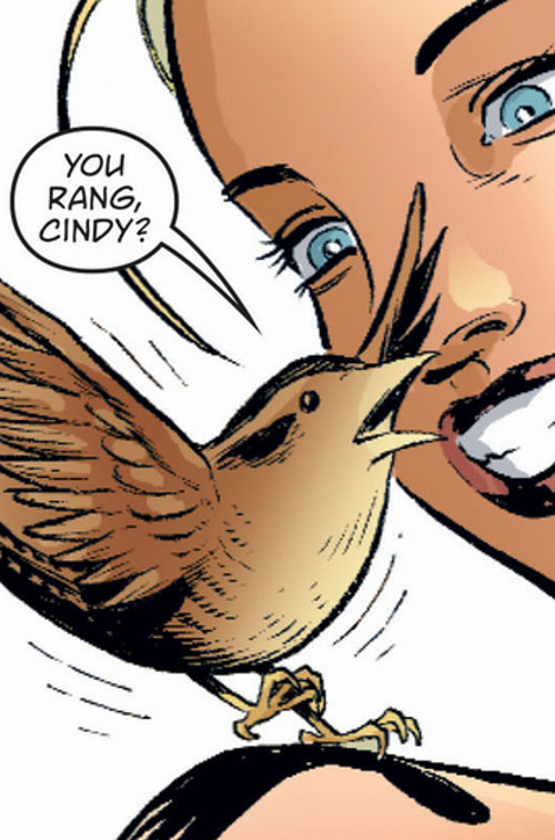 Jenny Wren of the Fables (DC Comics)