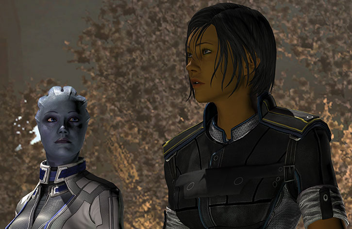 Commander Shepard and Doctor T'Soni address the Council