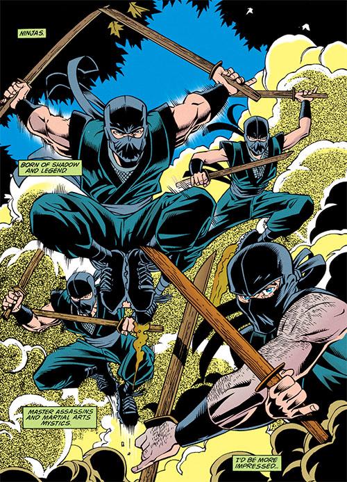 Comic book ninja with wooden swords