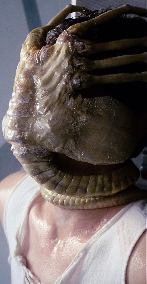 Alien facehugger wrapped around a human's head.