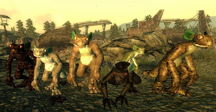 A collection of mutant geckos in Fallout video games