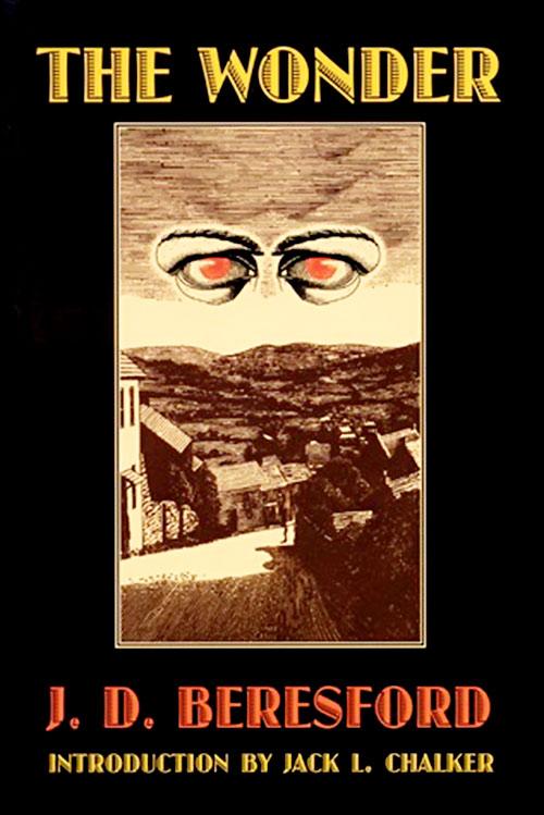 Hampdenshire Wonder Beresford novel cover