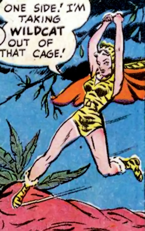 Huntress (Wildcat enemy) (DC Comics Golden Age) swinging from a vine