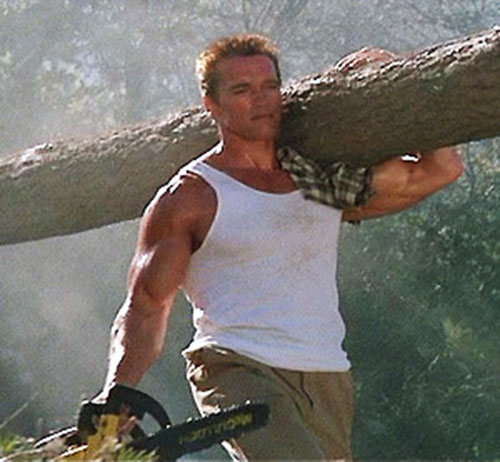 John Matrix (Arnold Schwarzenegger in Commando) carrying a tree