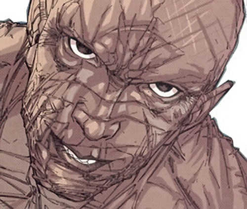 Jukko Hamalainen of Stormwatch Team Achilles (Wildstorm Comics) face closeup