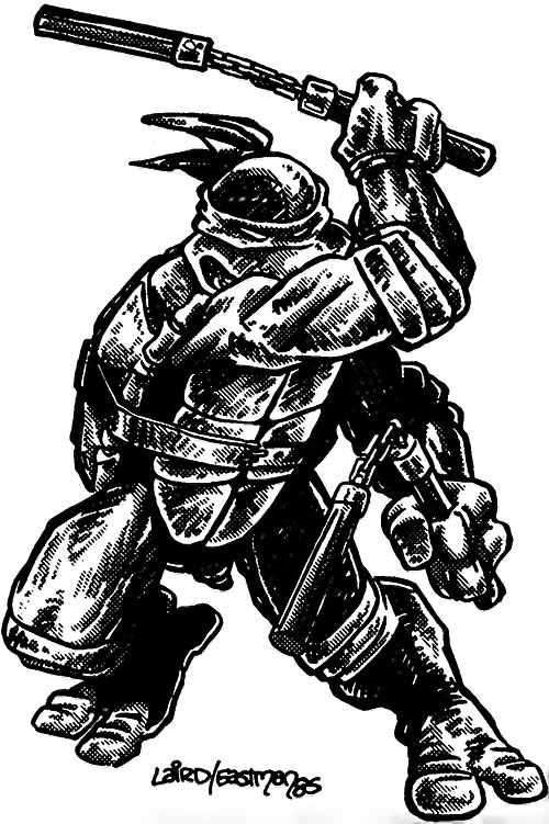 Michealangelo of the Teenage Mutant Ninja Turtles (TMNT comics) Laird Eastman 85