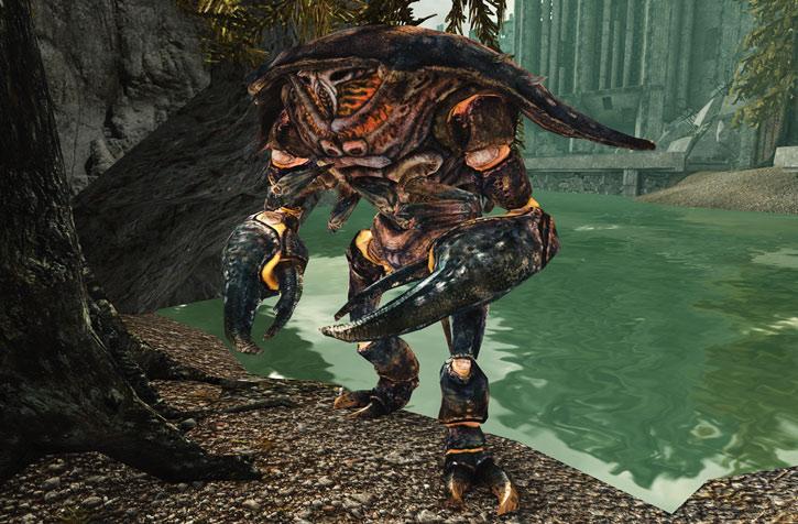 Mirelurk firelurk in Fallout 3