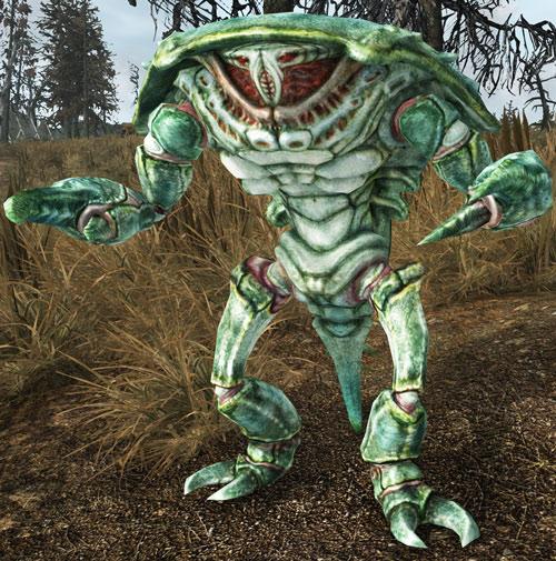 Mirelurk in Fallout 3