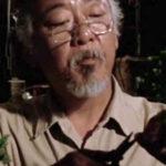Mister Miyagi