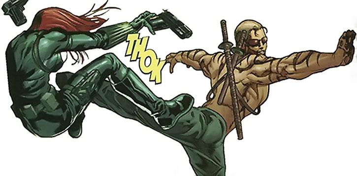 Mister X kicks the Black Widow