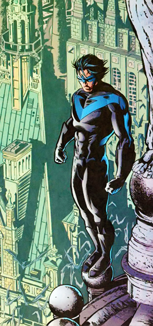 Nightwing on a Gothic roof
