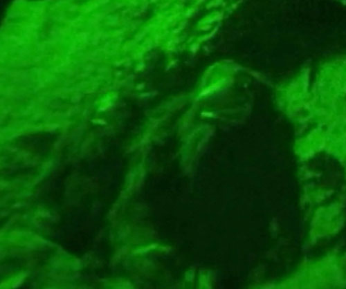 Trollhunter - 2 mountain king trolls