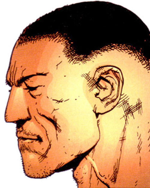 Paris of Stormwatch PHD (Wildstorm Comics) face closeup side view