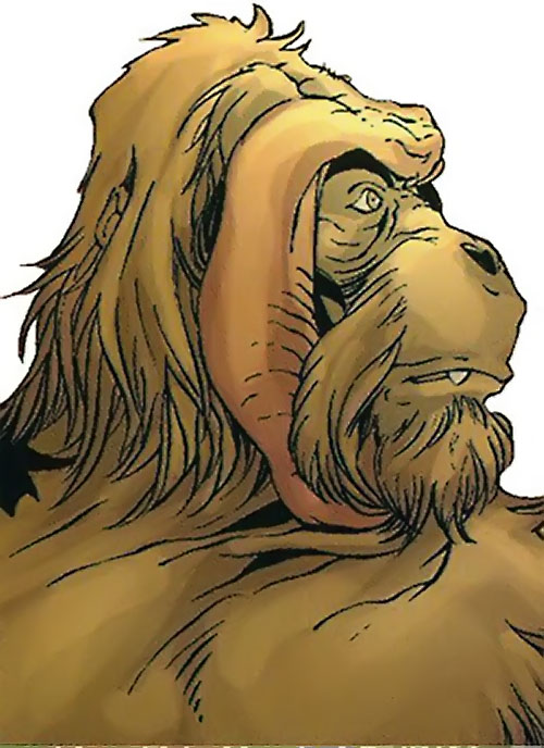 Peotor the orangutan (Super-Apes of the Red Ghost) (Marvel Comics) face closeup side view