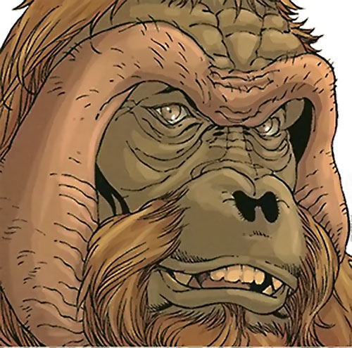 Peotor the orangutan (Super-Apes of the Red Ghost) (Marvel Comics) face closeup