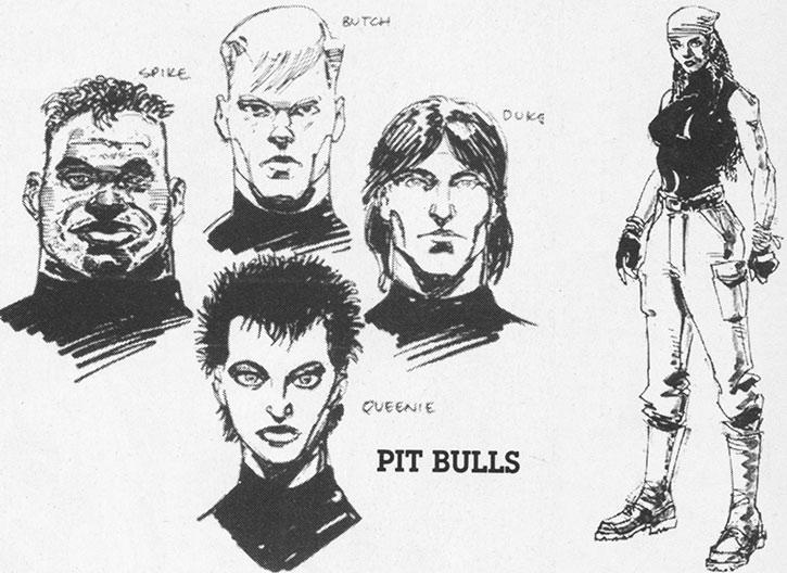 The Pitbulls portraits, and Anita