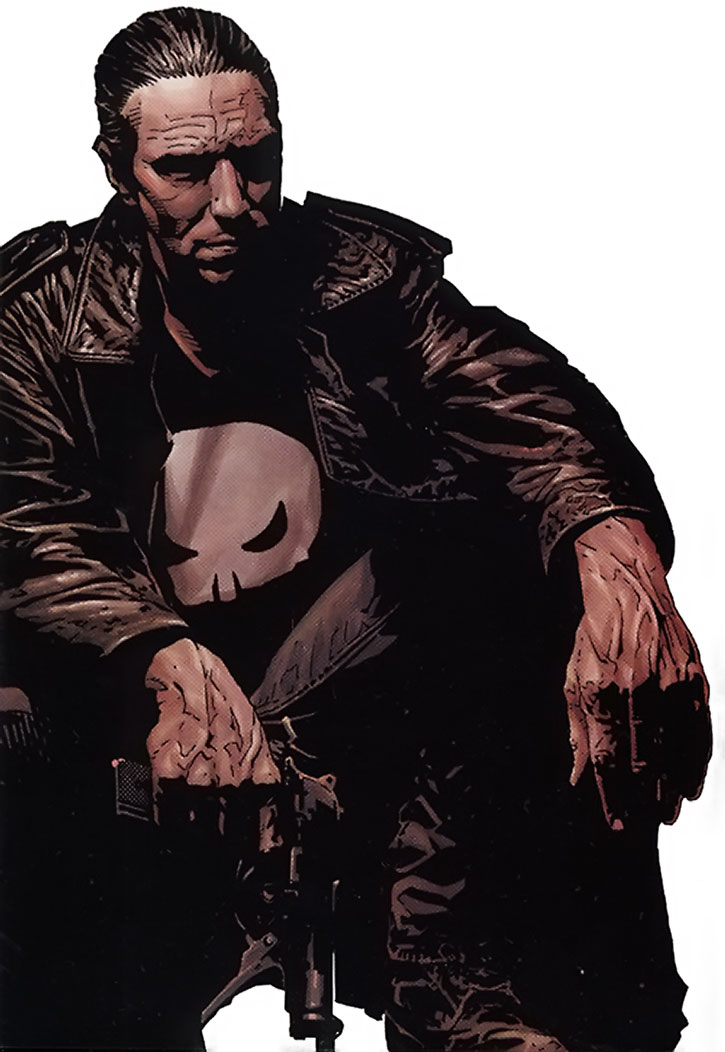 The Punisher by Tim Bradstreet, on a white background