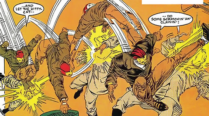 Sibercat vs. soldiers, doing acrobatic fighting