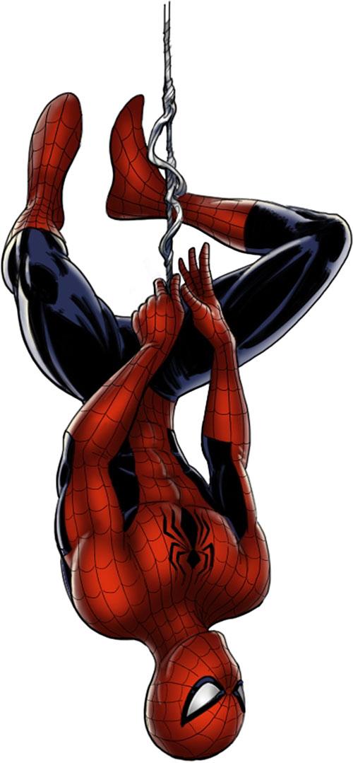 Spider-Man (Marvel Comics) (Peter Parker) hanging upside down