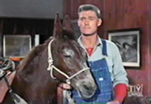 Sylvester Superman (Chuck Connors in Adventures of Superman) and his mule
