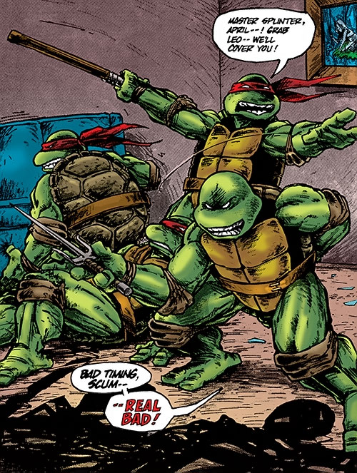 Teenage Ninja Mutant Turtles TMNT (Mirage comics) - about to fight in an apartment