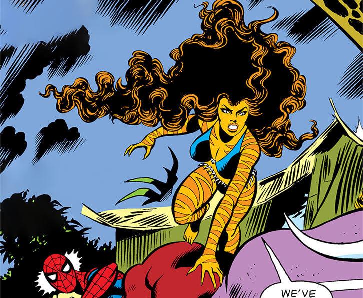 Tigra-Marvel-Comics-Greer-Nelson-h7