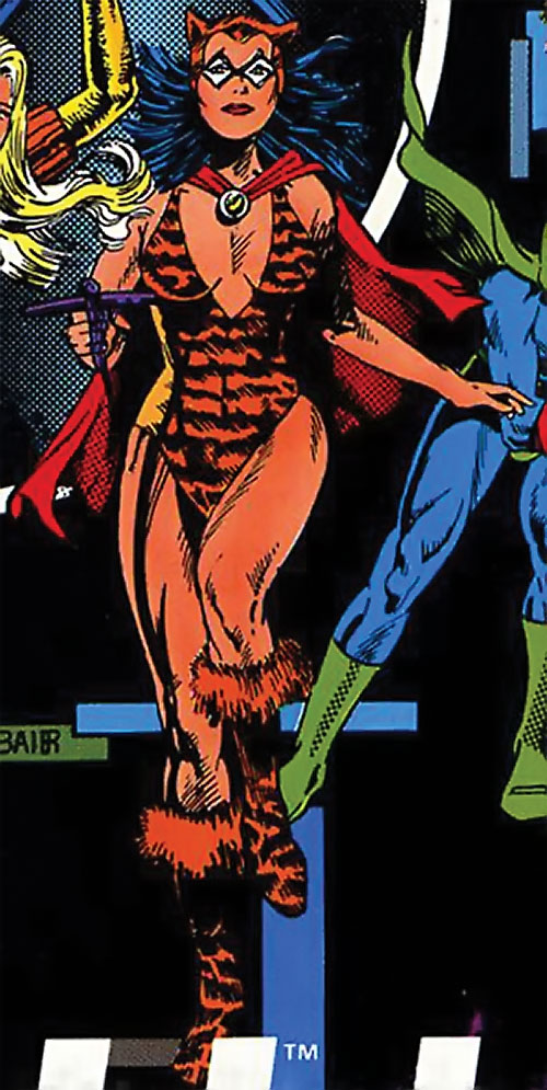 Tigress of the Young All-Stars (DC Comics) (Brooks) with Dyna-Mite