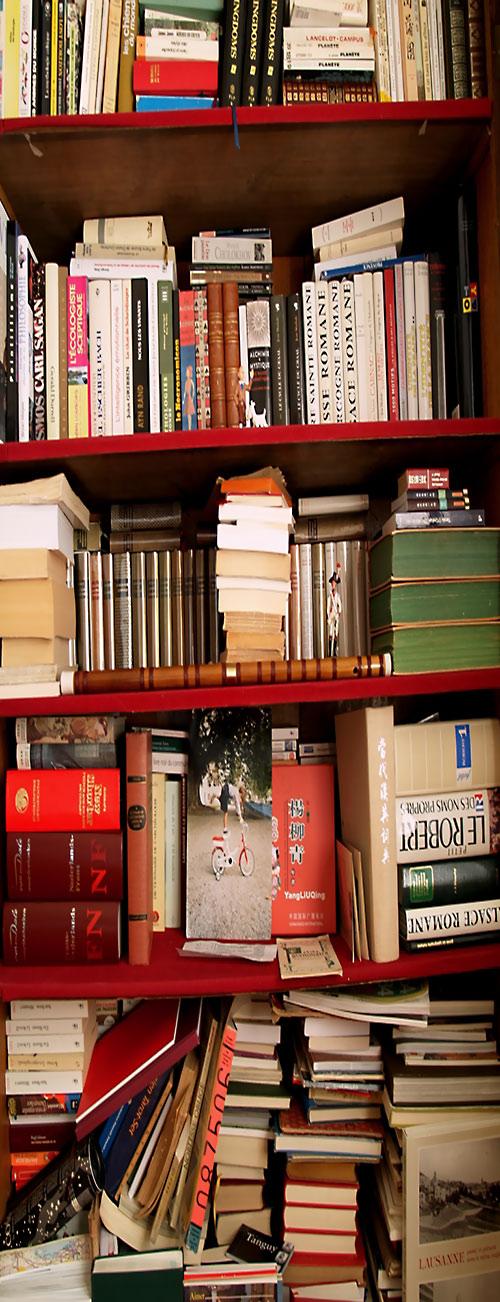 Bookshelf / Bibliothèque