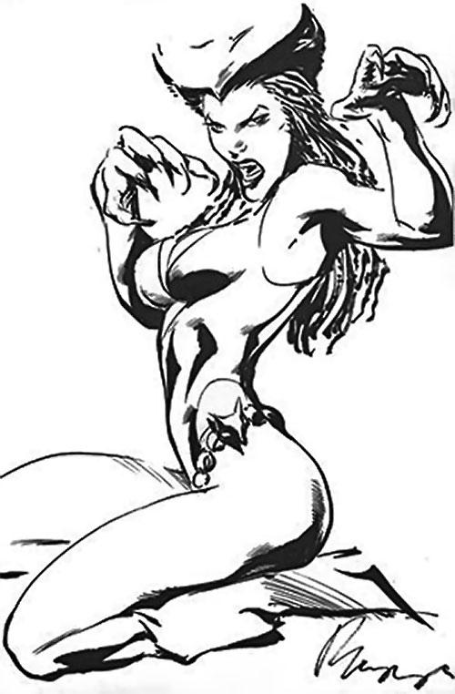 Vixen of the JLA (DC Comics) B&W sketch