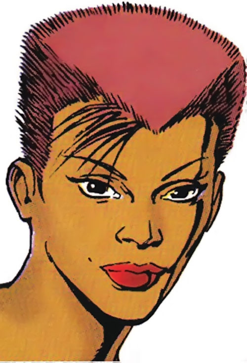 Vixen of the JLA (DC Comics) portrait with red hair