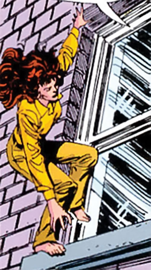 Wildcat of Infinity, Inc. (Yolanda Montez) (DC Comics) climbing outside of a window