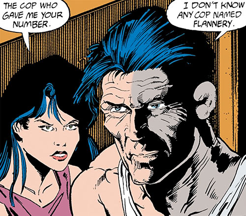 Wildcat (Ted Grant) and Selina Kyle