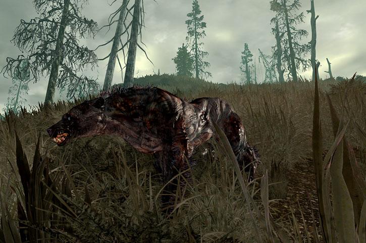 Fallout Yao Guai in tall grass, side view