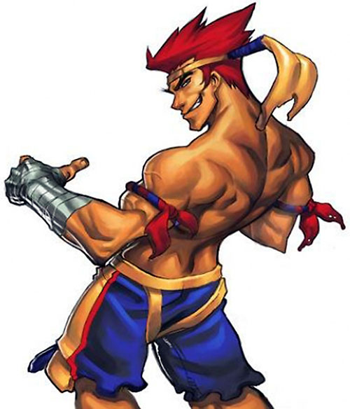 Adon (Street Fighter video games) back view