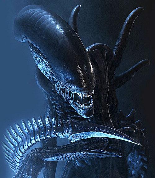 Alien xenomorph in darkness