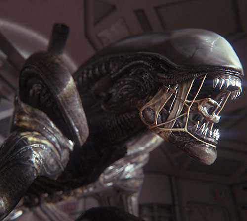 Alien xenomorph head closeup